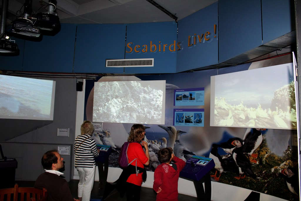 Remote controlled wildlife viewing at Scottish Seabird Centre