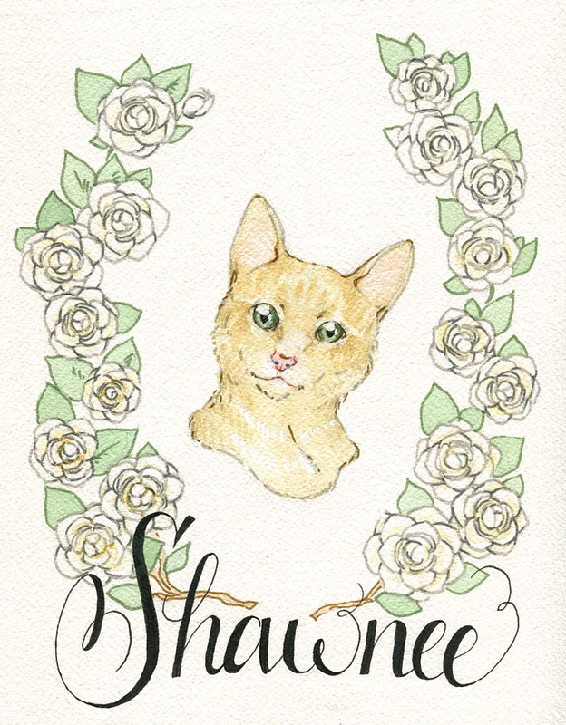 Shawnee-web
