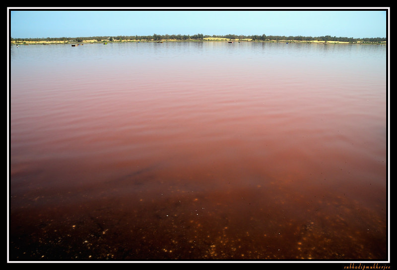 Lac Rose - Pink Lake