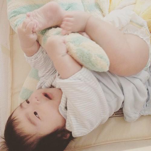 今日も赤ちゃんフォト