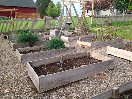 Raised Garden Beds: The Holy Shit I Built These For $25 Edition ...