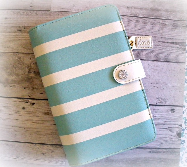 Color Crush teal stripe binder.1