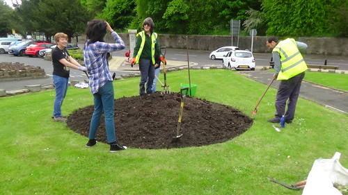 Planting Up Whickham May 15 1