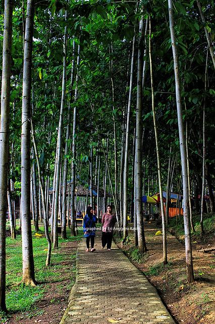 Rest Area Kubang Kangkung