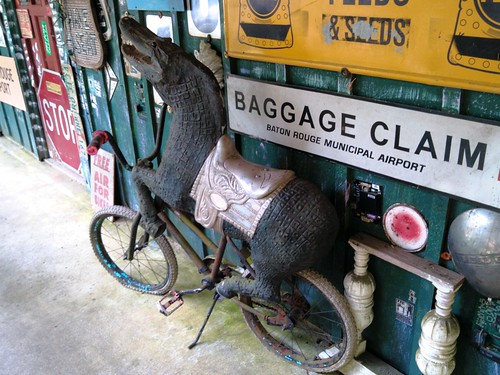 Alligator-horse on a bicycle