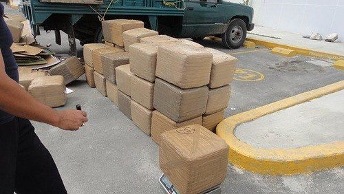 Policías Federales en SLP interceptan más de 800 kilos de marihuana