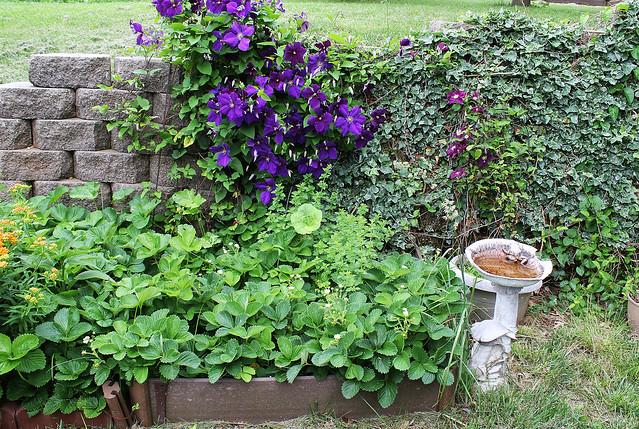Tending Garden
