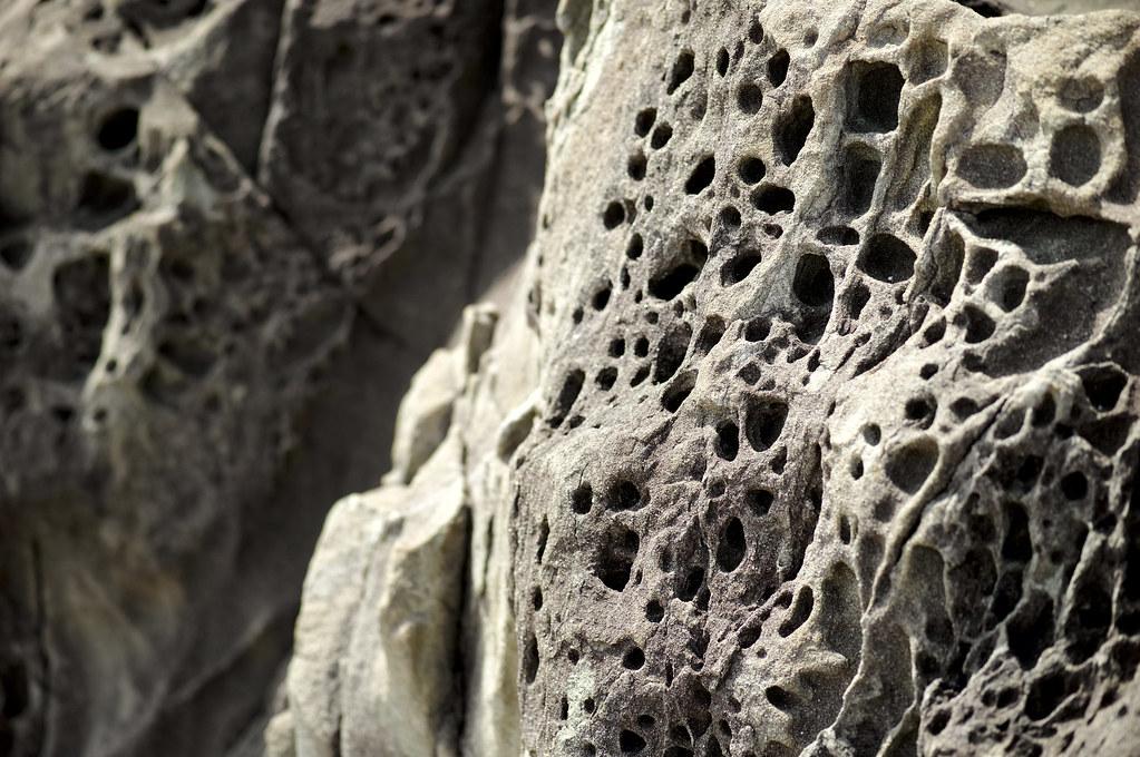 多孔岩|鳴門岬