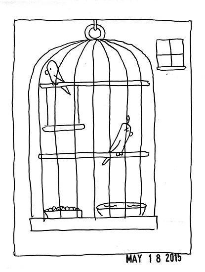 twobirds19