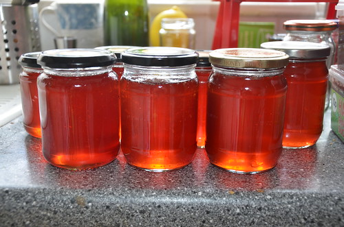 gooseberry and apple jelly May 15 3