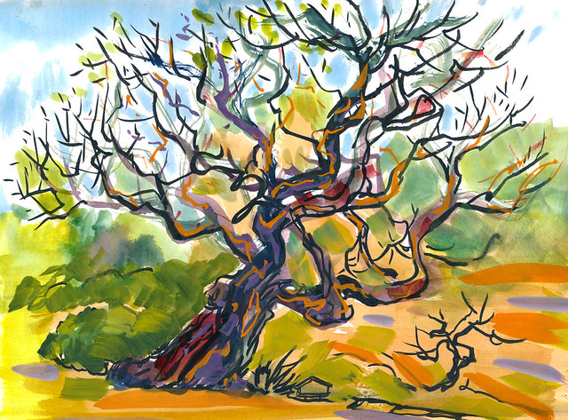 Hakone Gardens: Tree