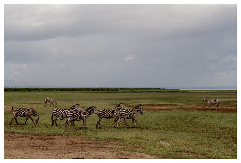 Tanzania-14