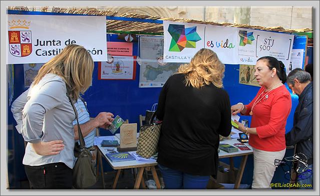 Feria de Asociaciones en Briviesca (19)