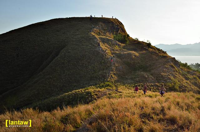 Grassland hikers