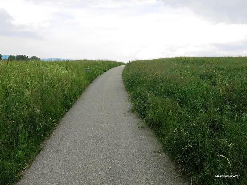 The Long path home in Feldbrunnen
