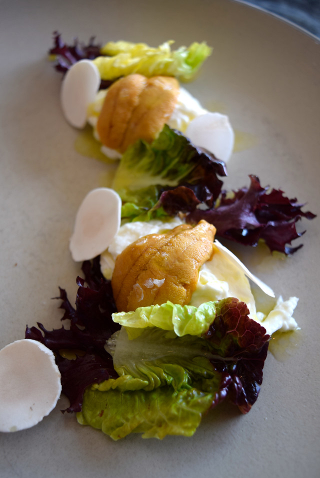 Uni, Buratta, Button Mushoom & Yuzu at Son of a Gun, West Hollywood