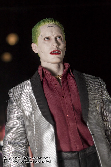 BATMAN100_HotToys_2-232