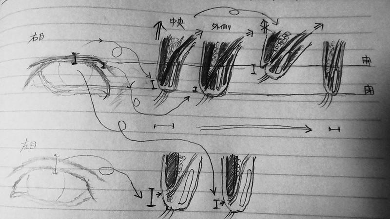 二重まぶたにする方法(理論編ー補足2)【新・視力回復法】〜自力で3日で簡単に・・・でも、ハードで乱暴だよ?〜用のネタ (2)