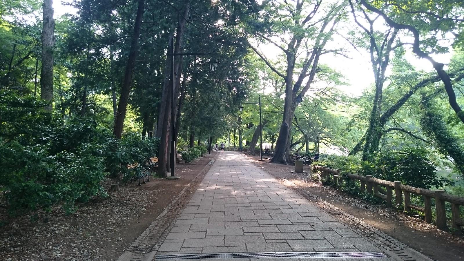 井の頭公園(DSC_0690)