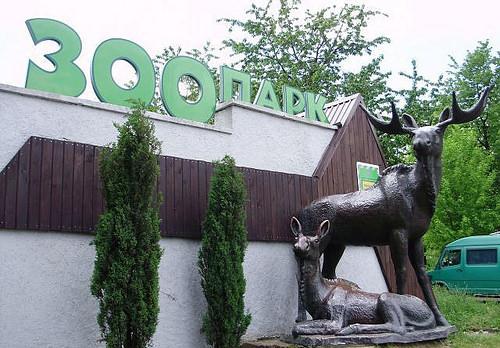 На розваги — в зоопарк