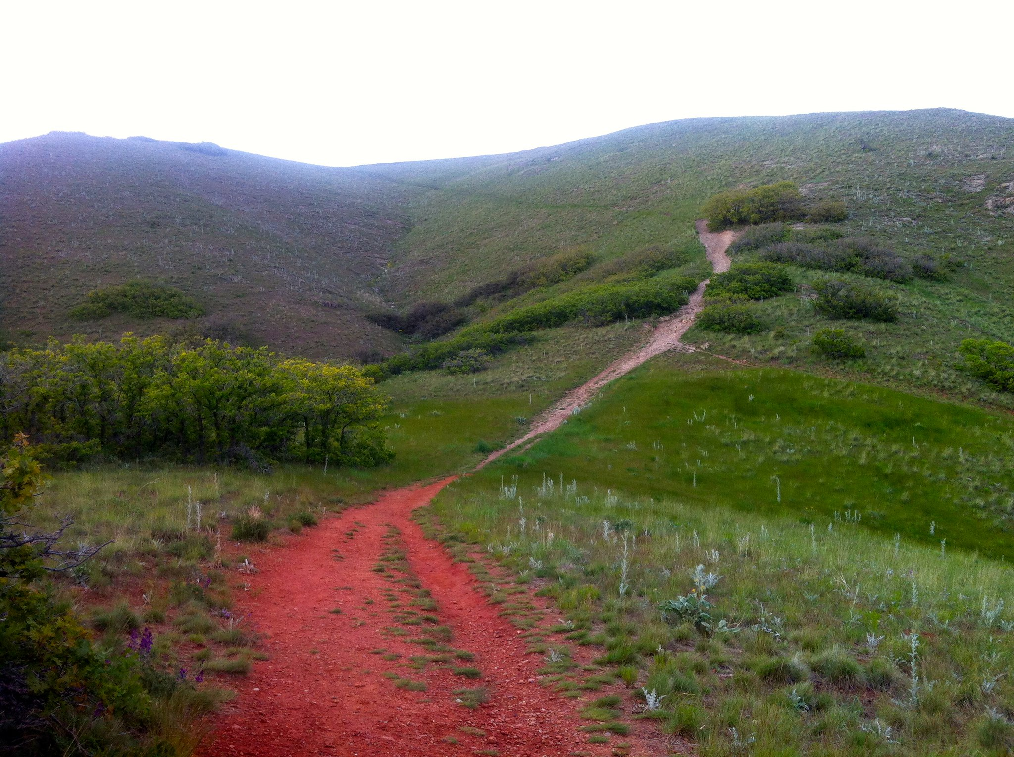 SLC trail running
