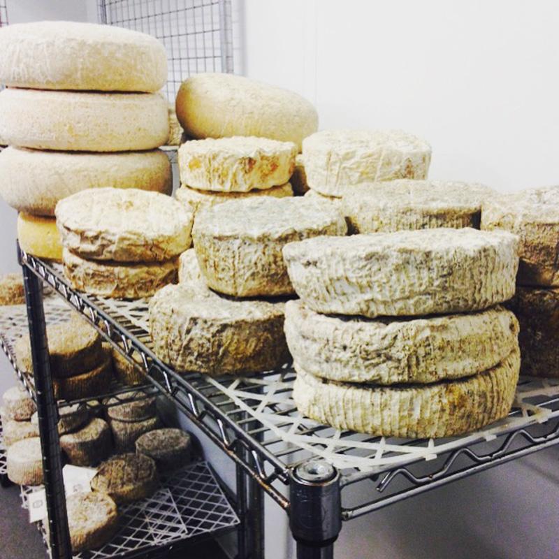 Wilde's cheese