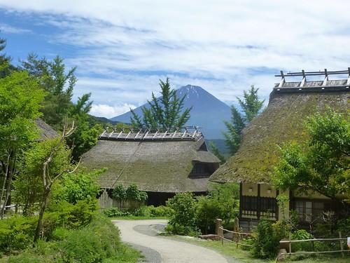 jp16-Fuji-Saiko-Village (5)