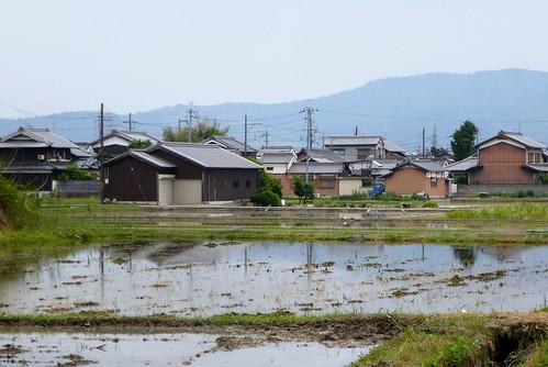 jp16-Nara-j2-balade1 (3)