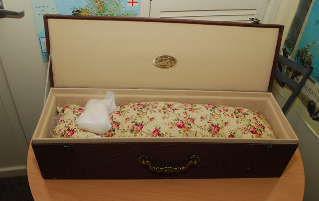 2.  Maskcat body arrival