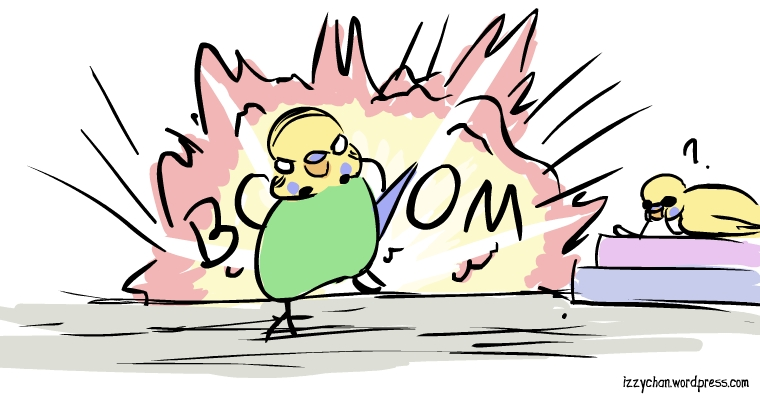 budgie running from explosion slow mo
