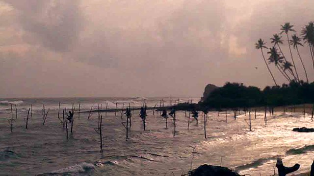 Sri Lankan Stilt Fisherman