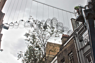 Birds of Seven Dials | by Dominic Wilcox