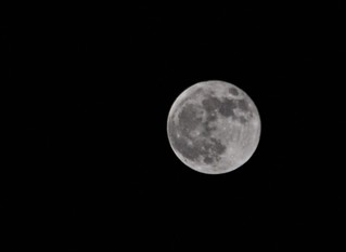 full moon 11-28-2012 | by danbruell