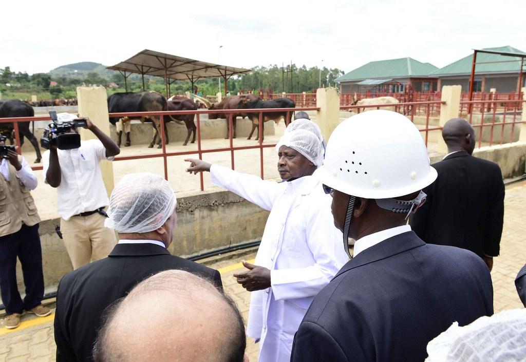 Museveni Beef 3