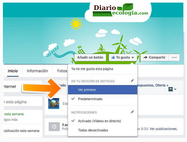 facebookwall1