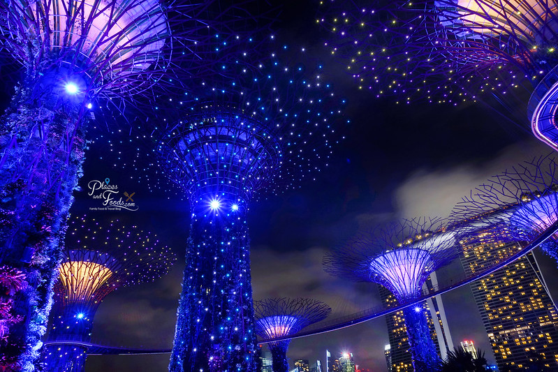 gardens by the bay night light and sound show