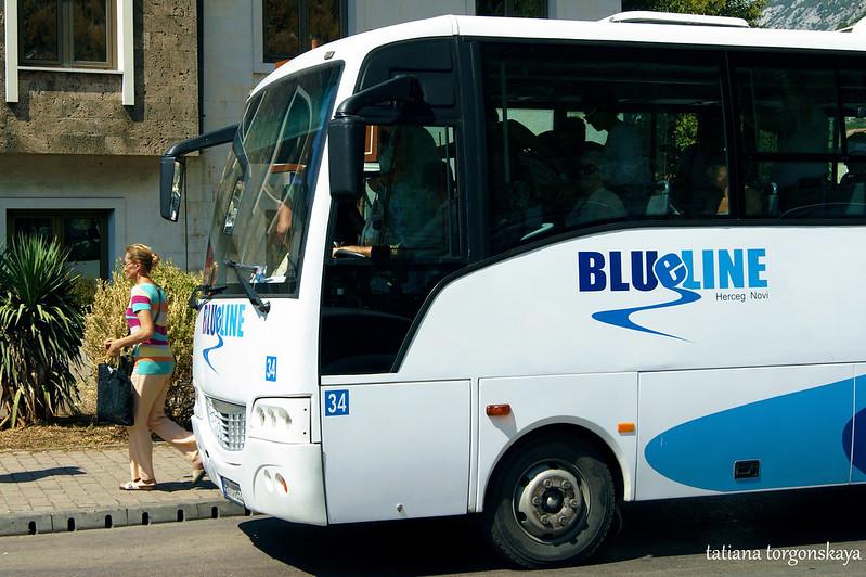 Остановка автобуса Blue line