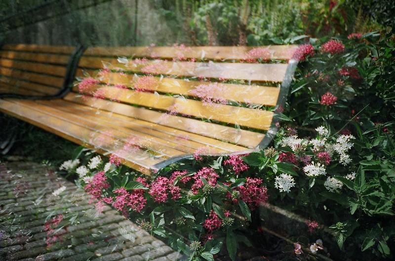 花とベンチ(多重露光)