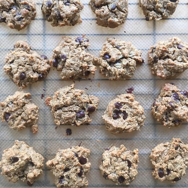 Gluten-free peanut butter oat chocolate chip cookies
