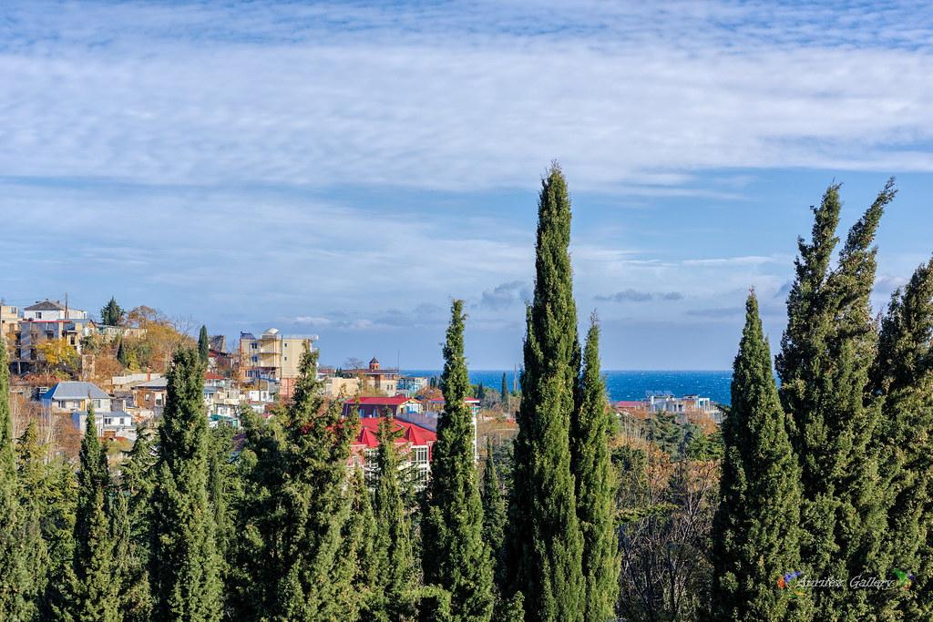 Views in November