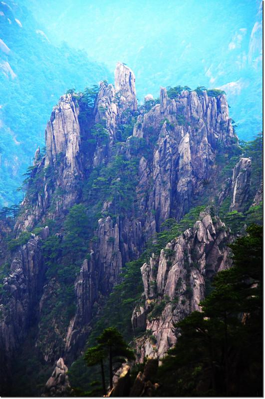 黃山的奇松怪石 9