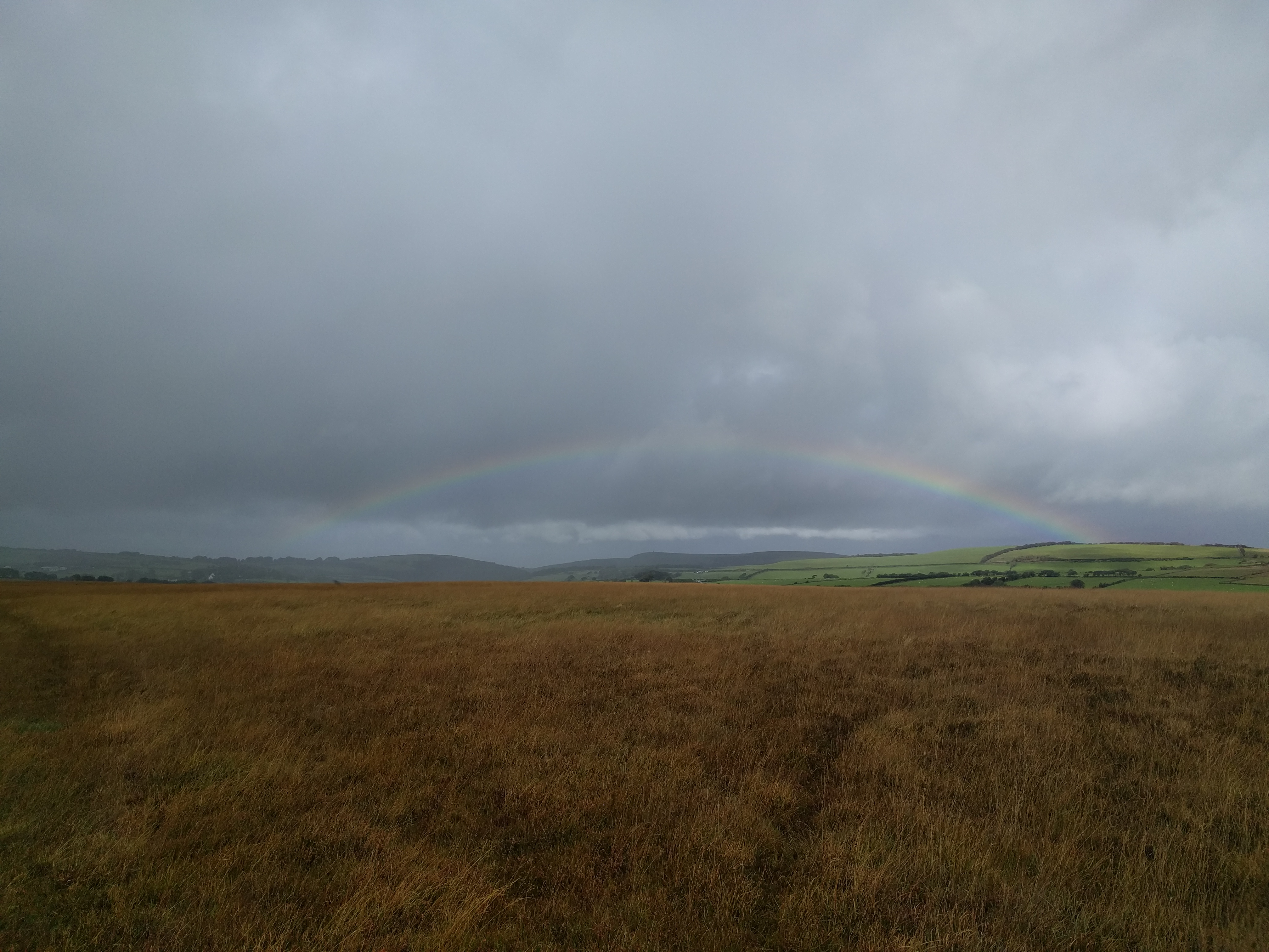 Rainbow from Cheriton Ridge #sh #twomoorsway #DevonC2C