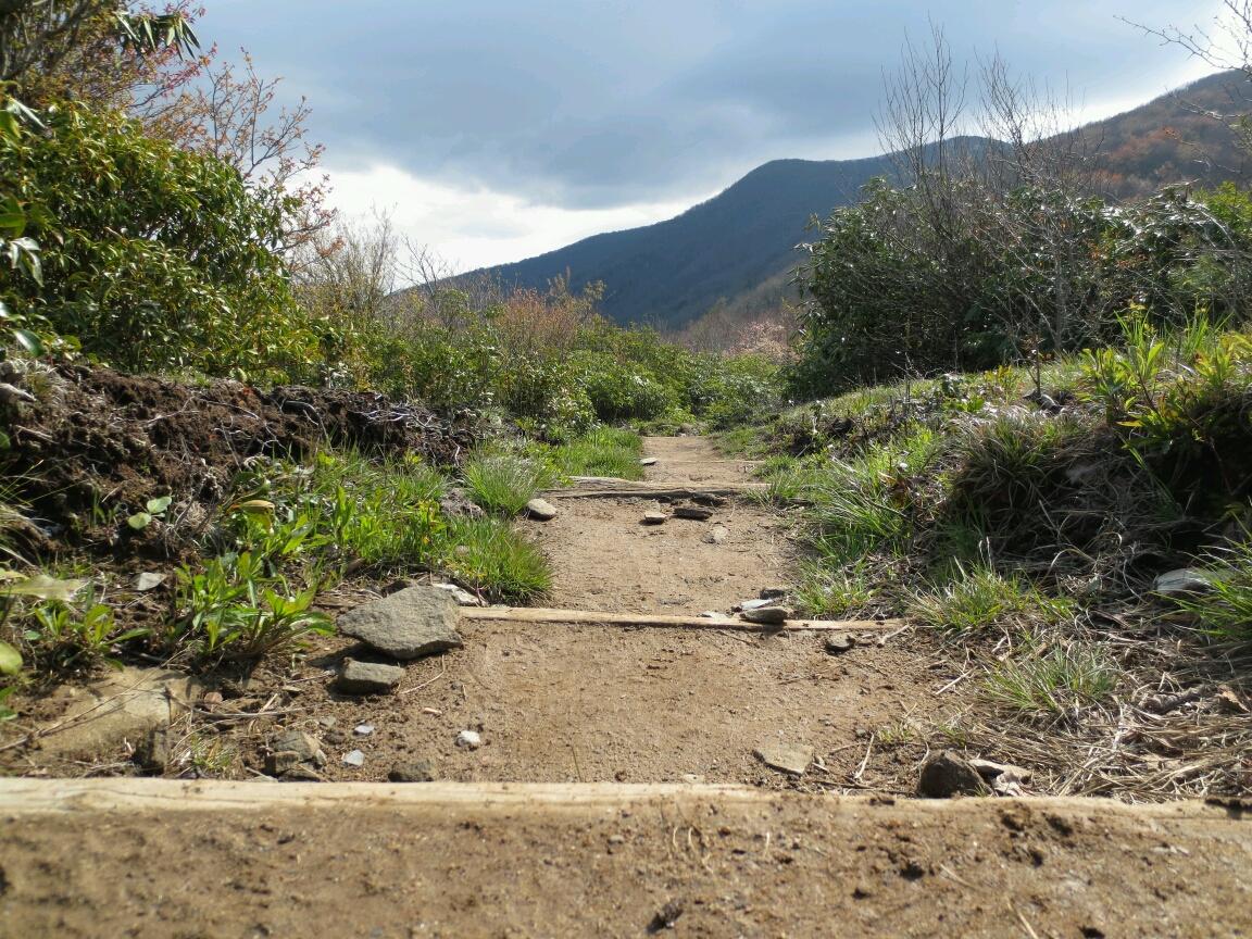 On the Appalachian Trail ...