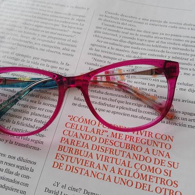 Gato con gafas 4
