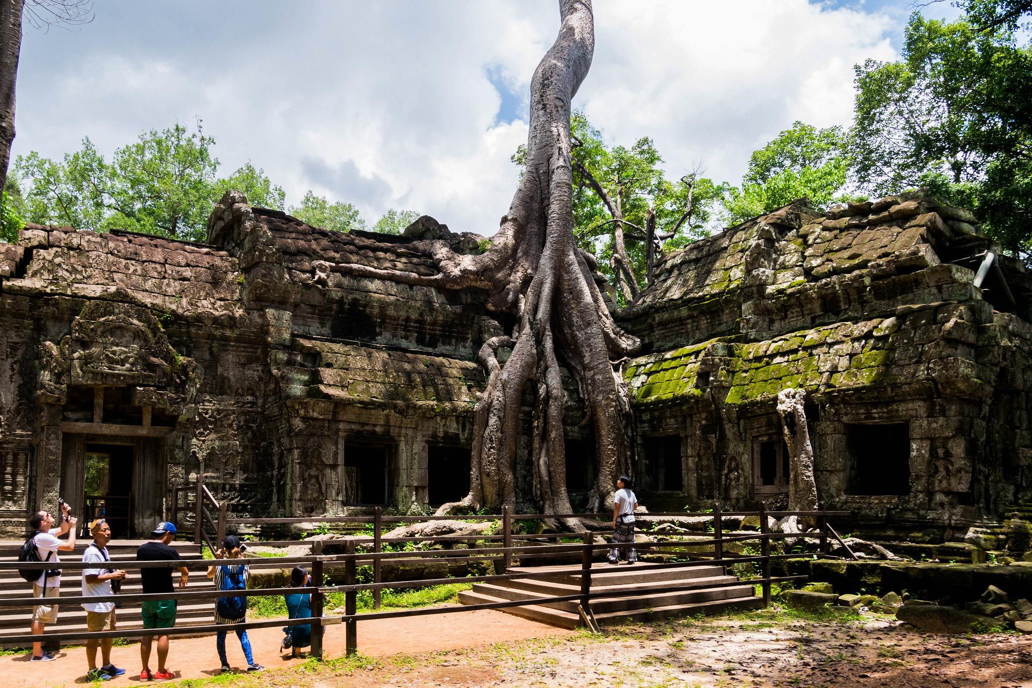 Angkor #24