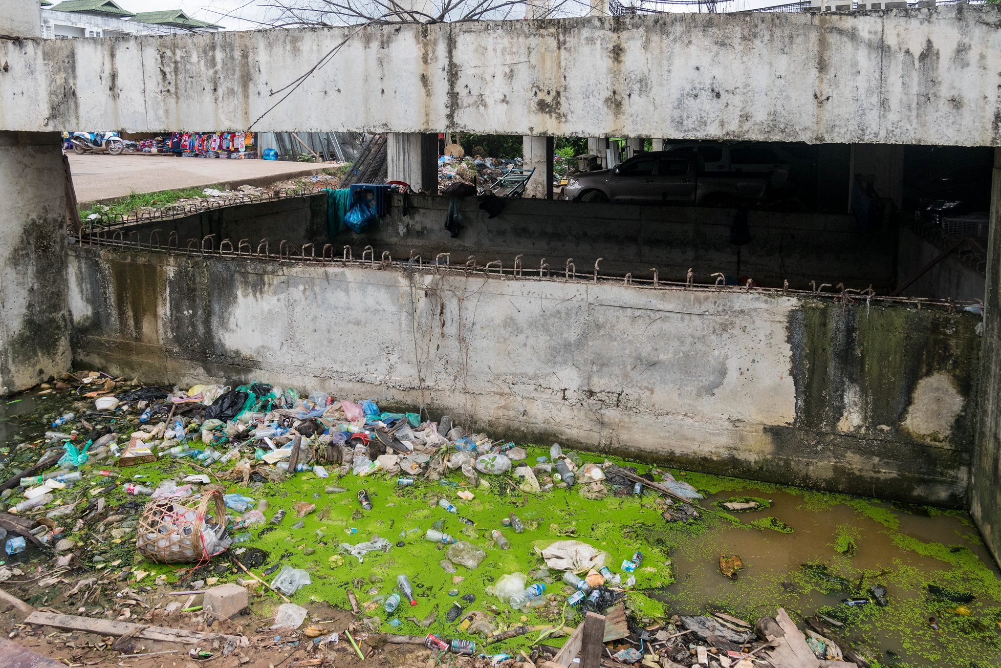 Ecology is a desperate cause in Asia