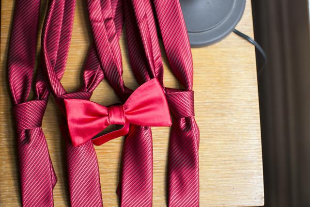WG Well-Groomed Groom ShanBrandon 4 Bowtie Neckties