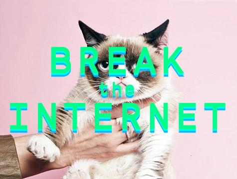 Breaktheinternet_webflyer