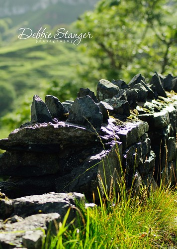 Northern Ireland - Stone Wall Looking Down Into Murlough Bay | by Debbie Stanger