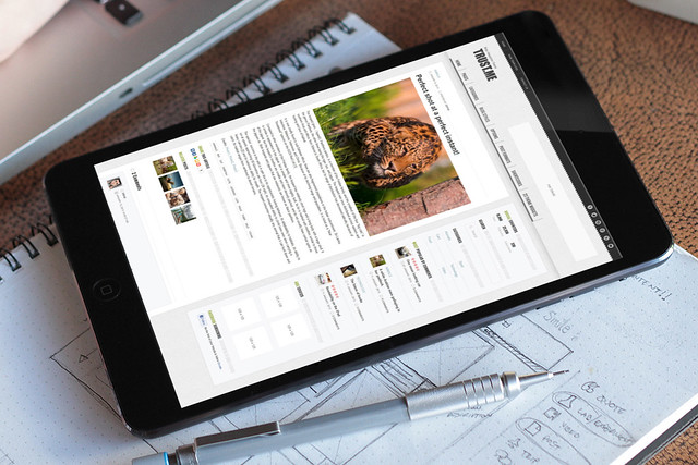 TrustMe - Responsive WordPress Magazine / Blog - Tablet 03